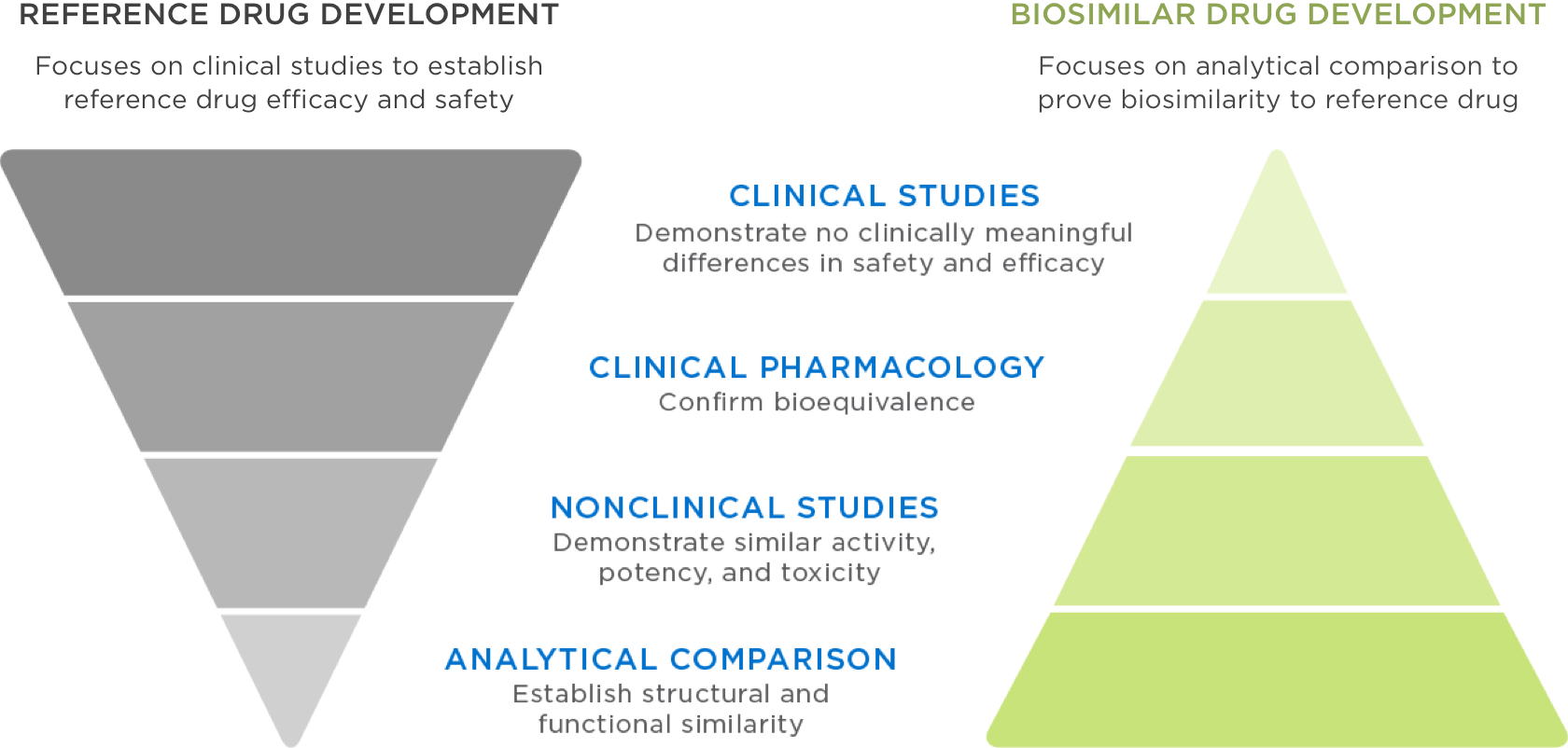 Reference and biosimilar drugs follow distinct yet rigorous standards for FDA approval